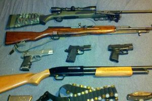 Guns for Survival: What Guns Should I Have?