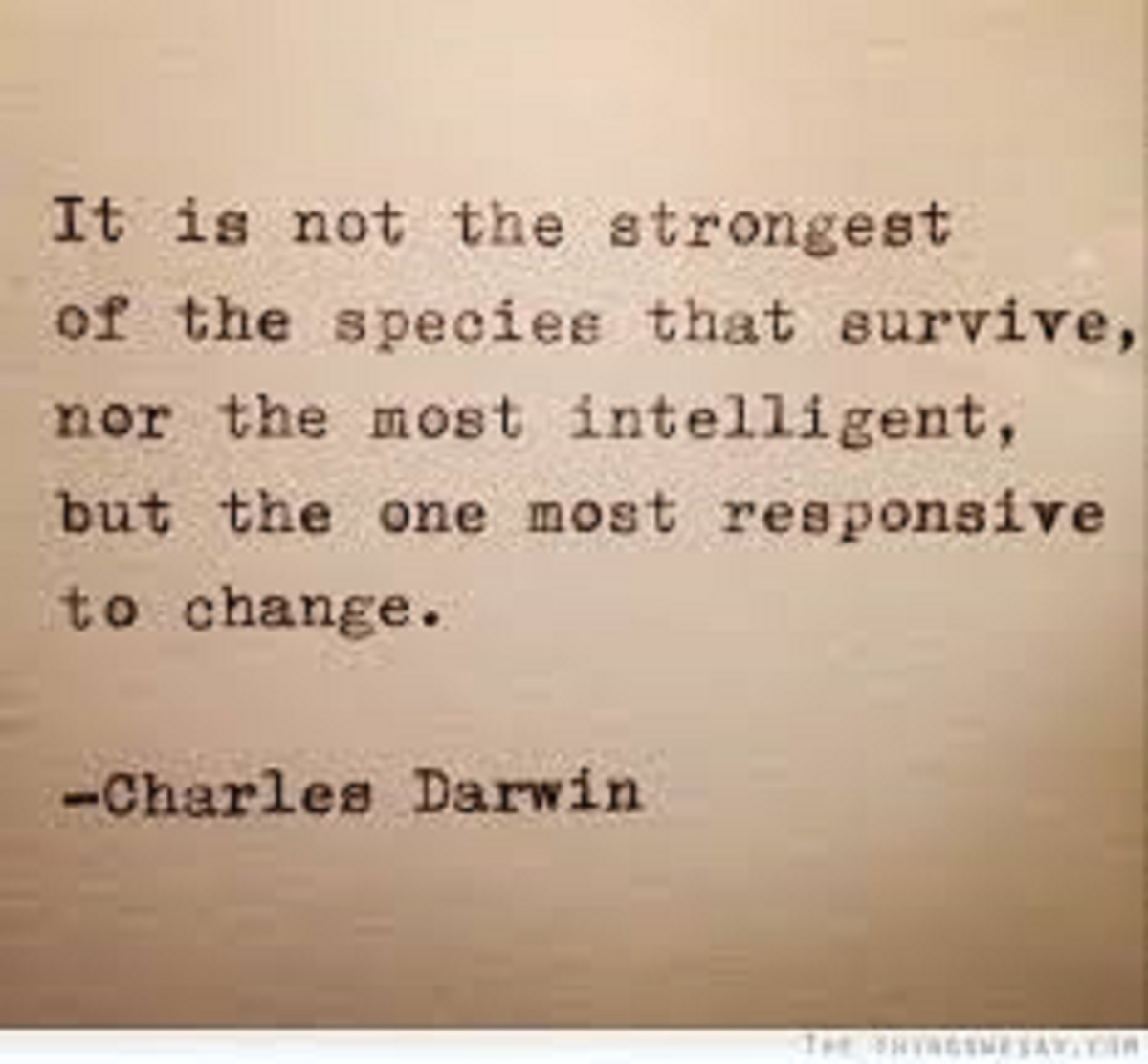 Survival Quotes Survival Quotes to Keep you Prepping | Urban survival tip for Preppers Survival Quotes