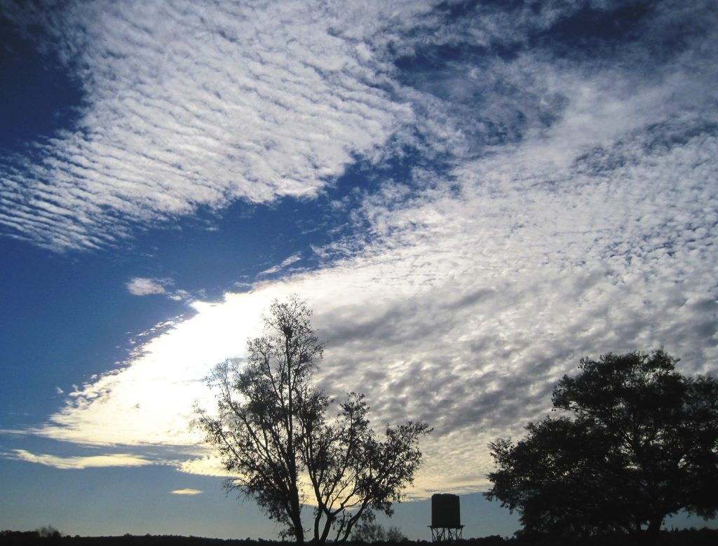 Telling Weather Using Clouds How Stratus