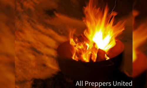Survival Cooking – Food Survival