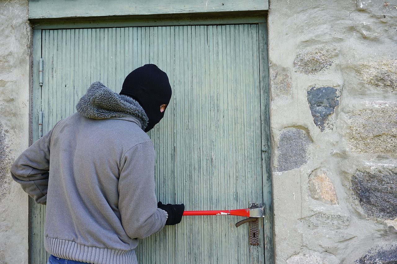 What to do when witnessing a burglary safety and security urban survival